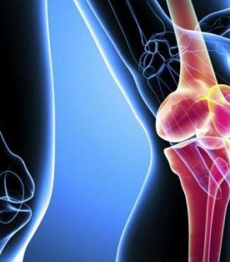 Здоровый сустав и остеоартроз